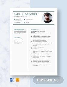 Domestic Assistant Resume Template