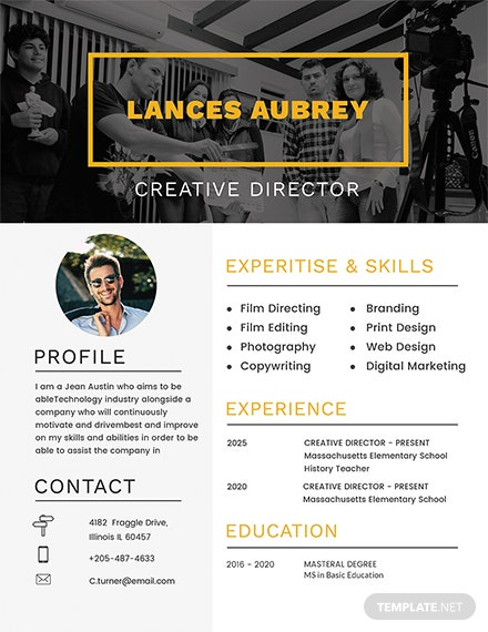 Free Director Resume Template