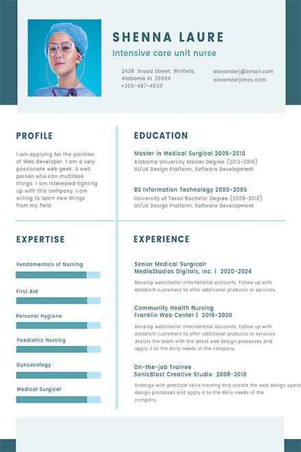 Free Nursing Student CV Template