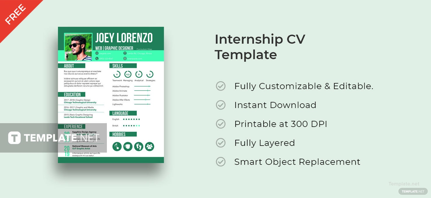 Free Internship Cv And Resume Template In Adobe Indesign  TemplateNet
