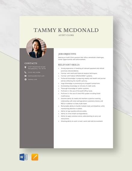 Audit Clerk Resume Template