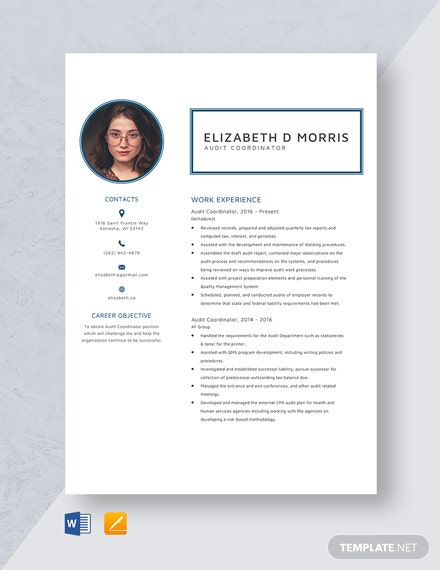 Audit Coordinator Resume Template