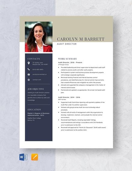 Audit Director Resume Template