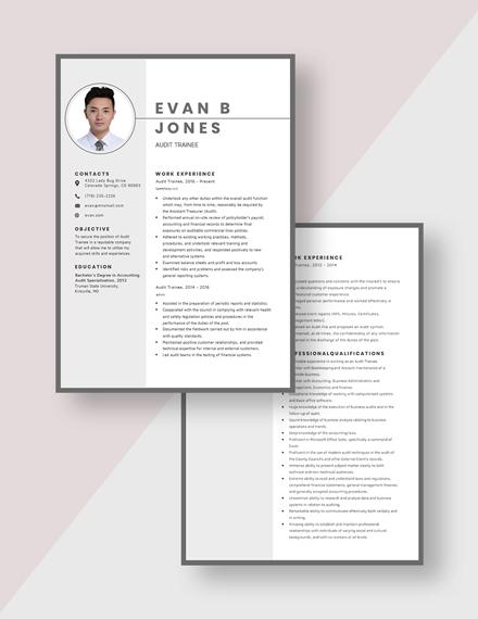 Audit Trainee Resume Download