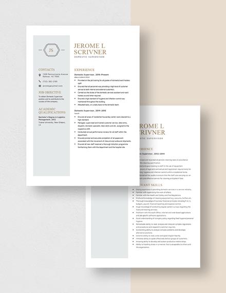 Domestic Supervisor Resume Download