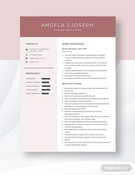 Domino Developer Resume Template