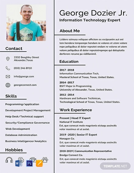 FREE IT Resume Format  Word