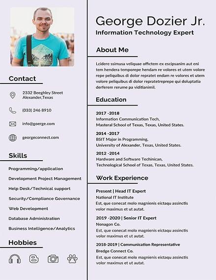 Free IT Resume Format