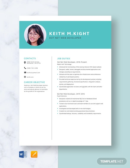 Dot Net Web Developer Resume Template