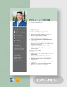 E-commerce Analyst Resume Template