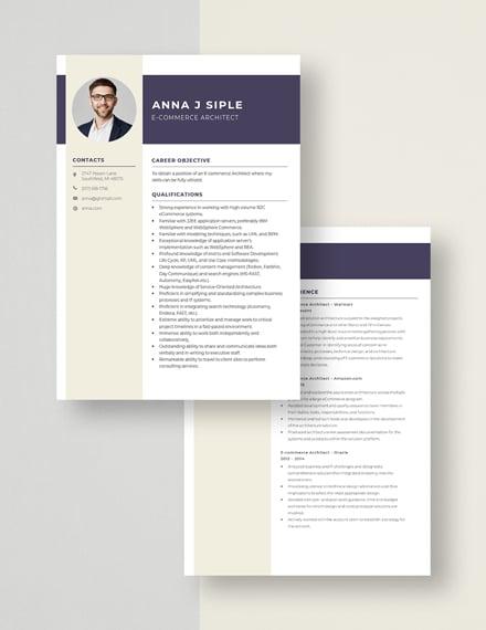 ECommerce Architect Resume Download