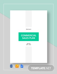 Commercial Sales Plan Template