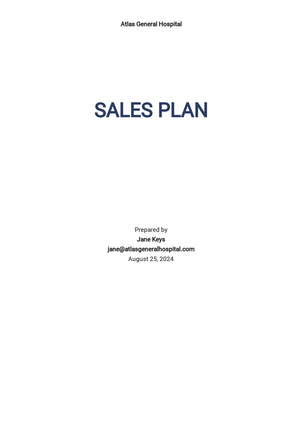 Hospital Sales Plan Template.jpe
