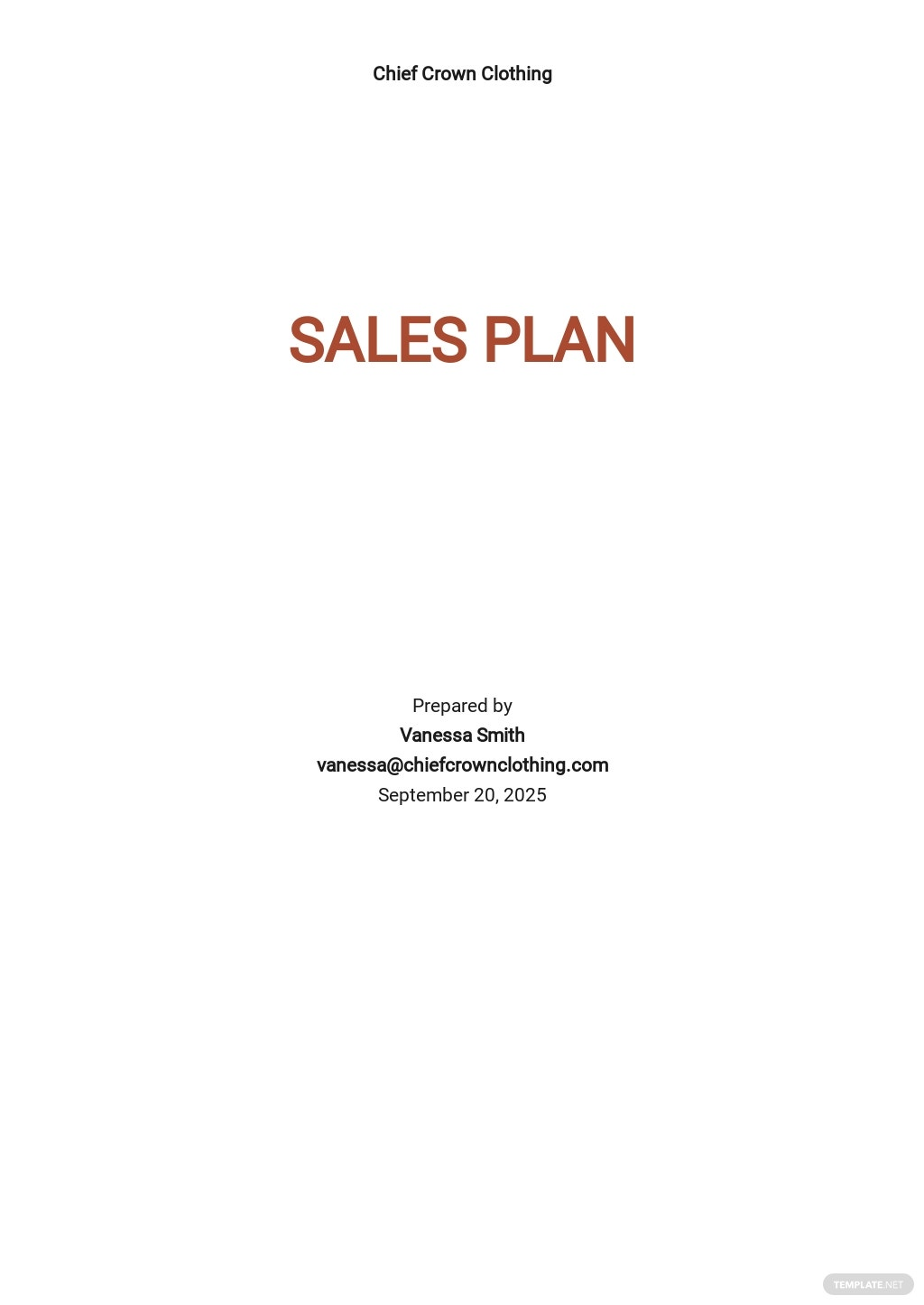 New product Sales Plan Template