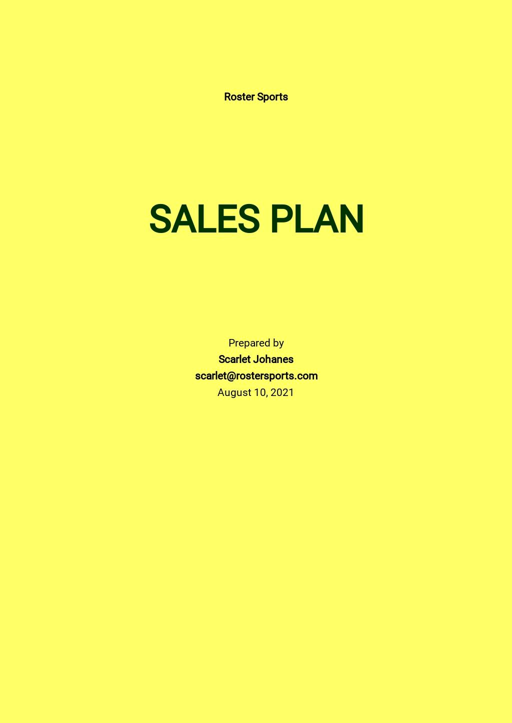 Sport Equipment Sales Plan Template