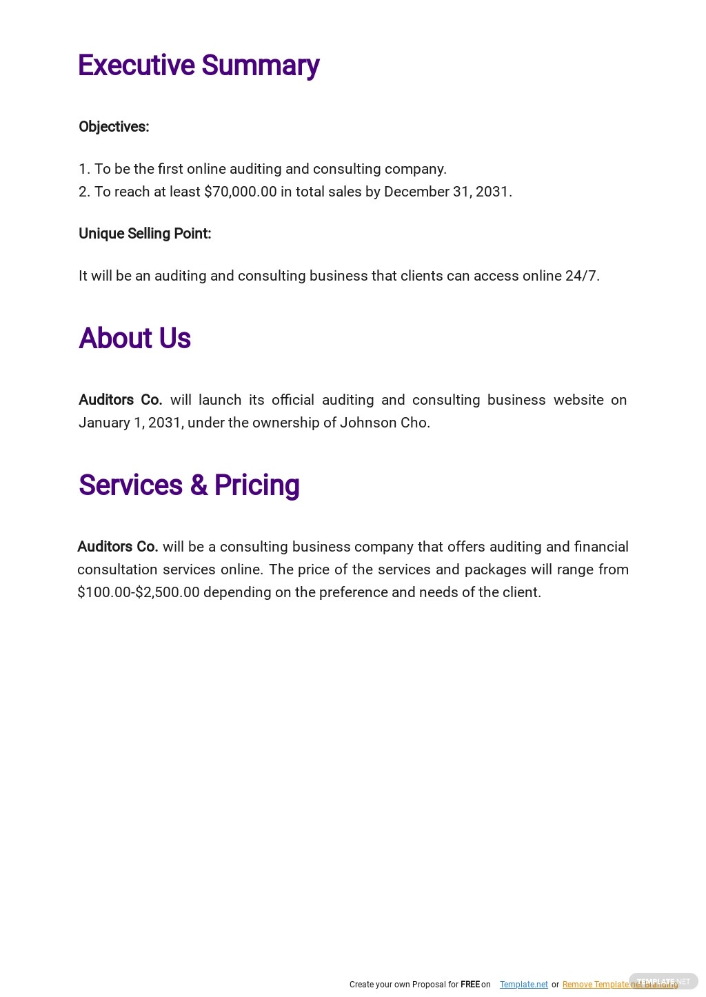 Auditing and Consulting Business Plan Template 1.jpe