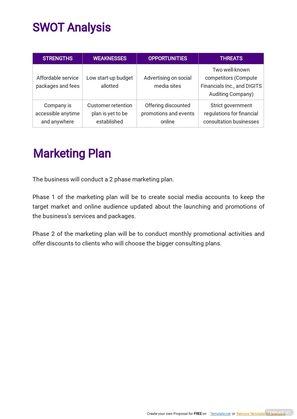 Auditing and Consulting Business Plan Template 3.jpe