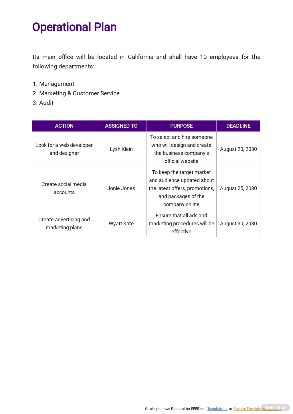 Auditing and Consulting Business Plan Template 4.jpe