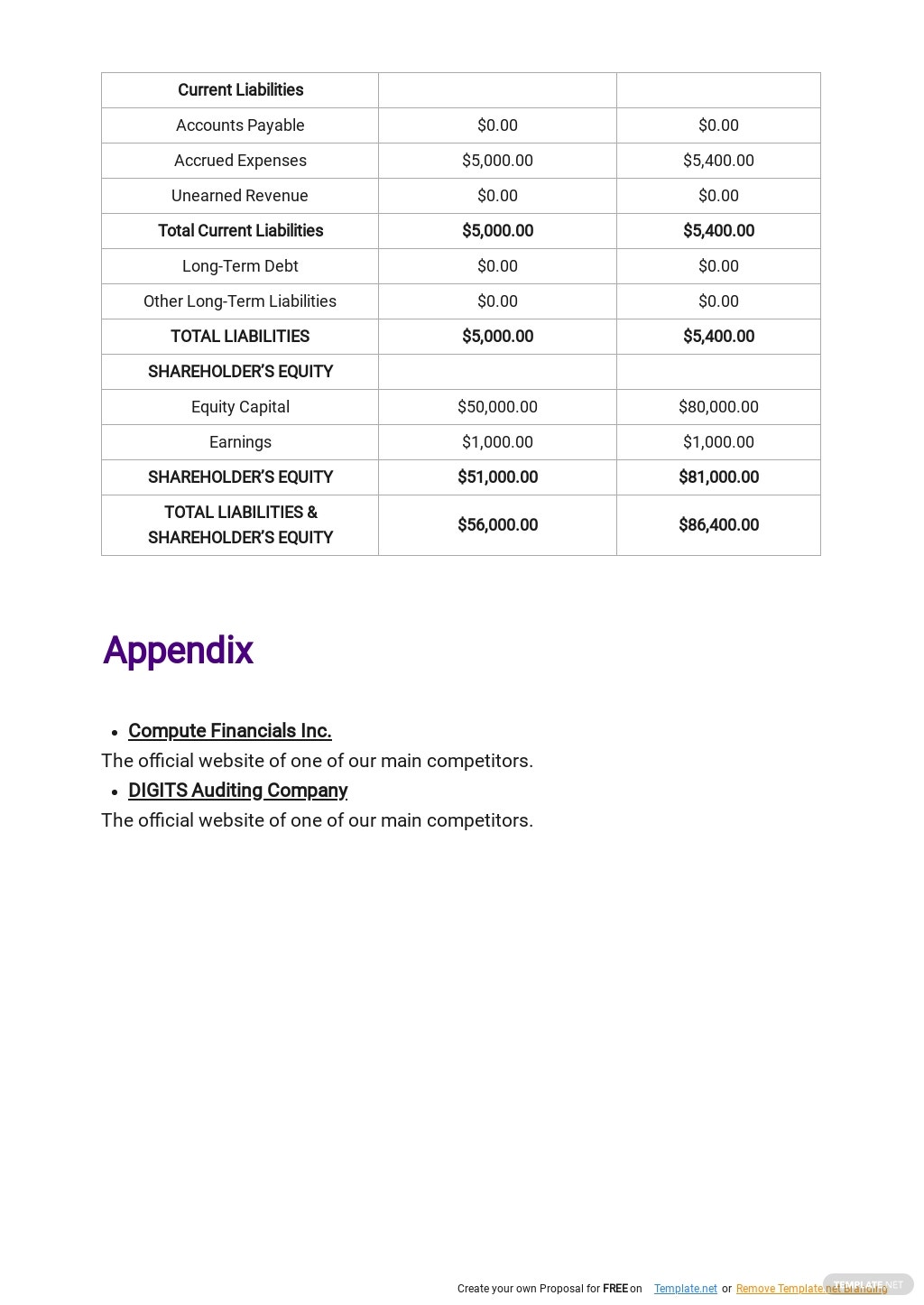Auditing and Consulting Business Plan Template 8.jpe