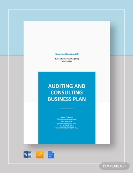Auditing and Consulting Business Plan