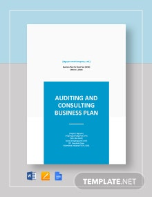 Auditing and Consulting Business Plan Template