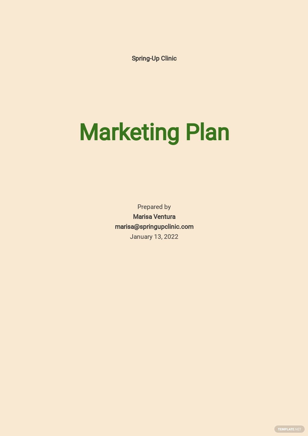 Fertility Clinic Marketing Plan Template