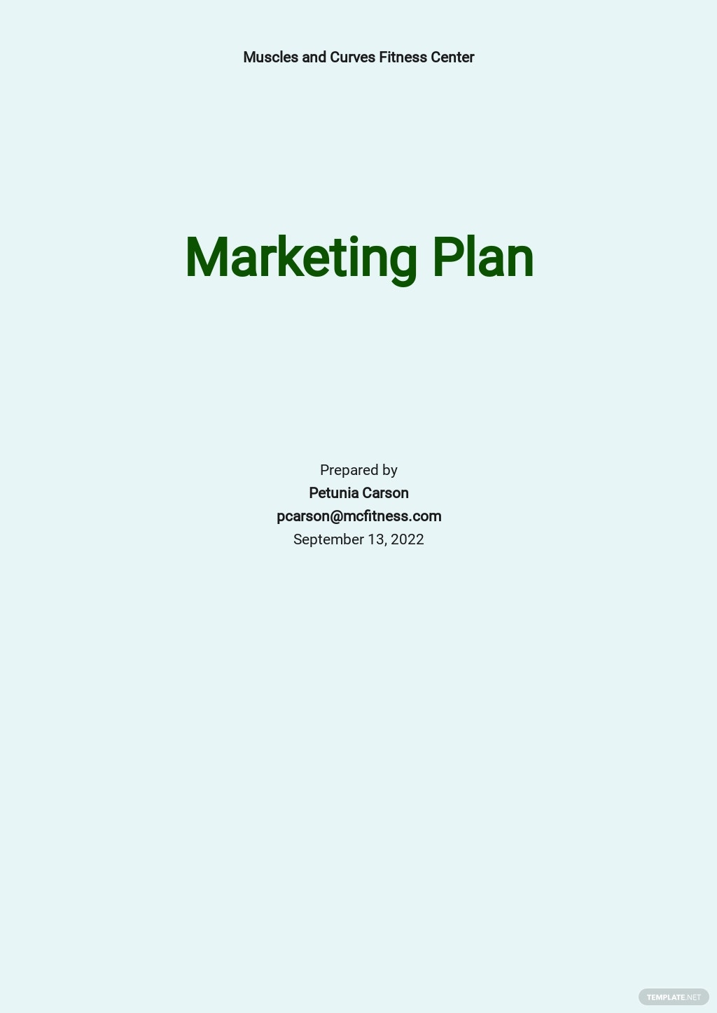 Fitness Studio Marketing Plan Template.jpe