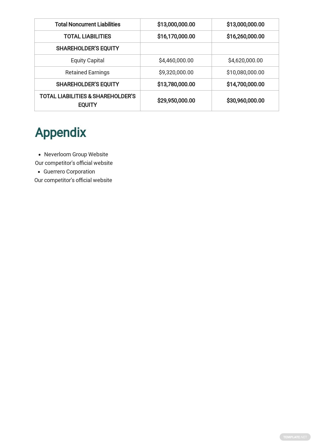 Holding Company Business Plan Template 10.jpe