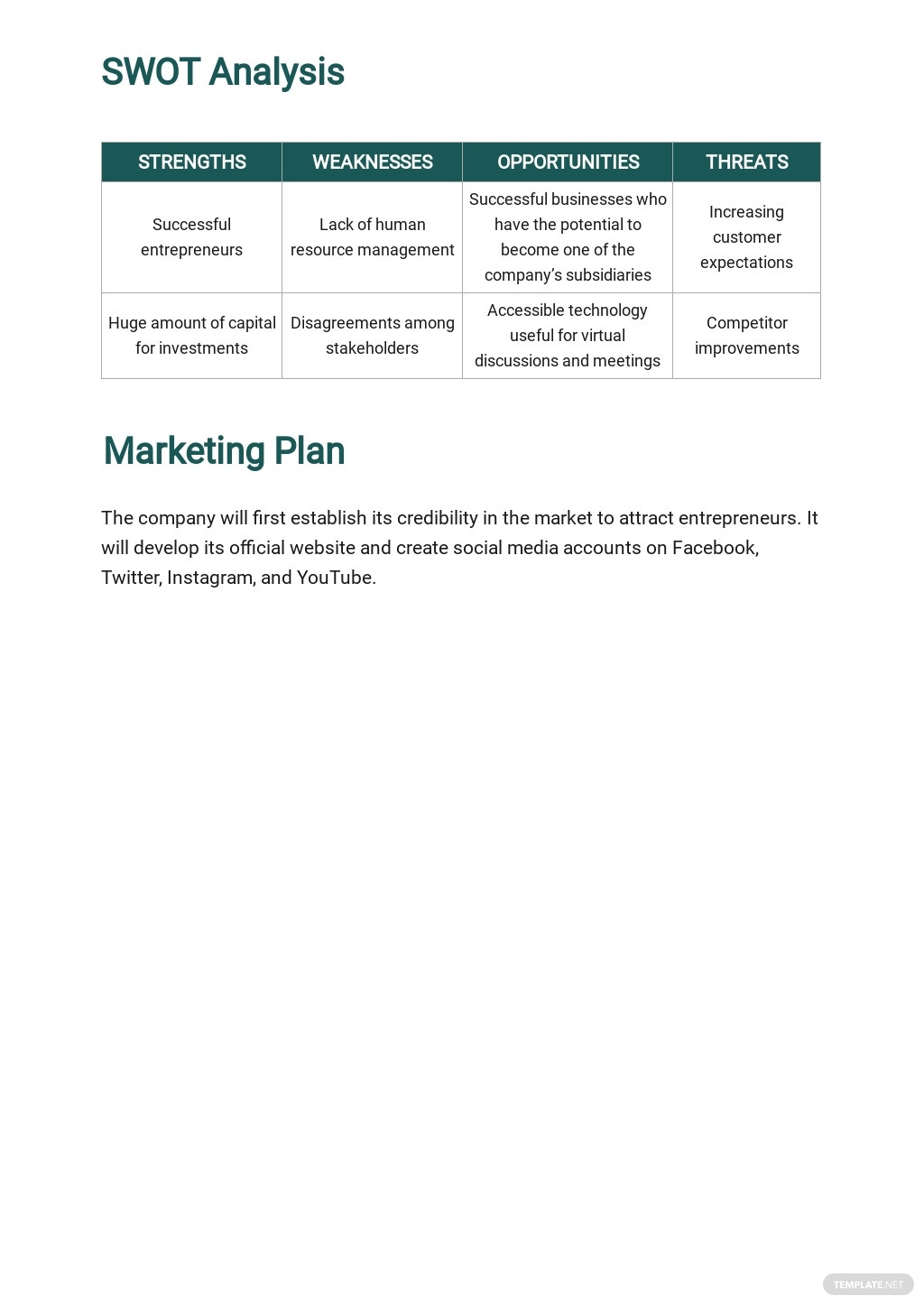 Holding Company Business Plan Template 4.jpe