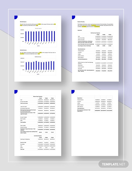 Simple Holding Company Business Plan