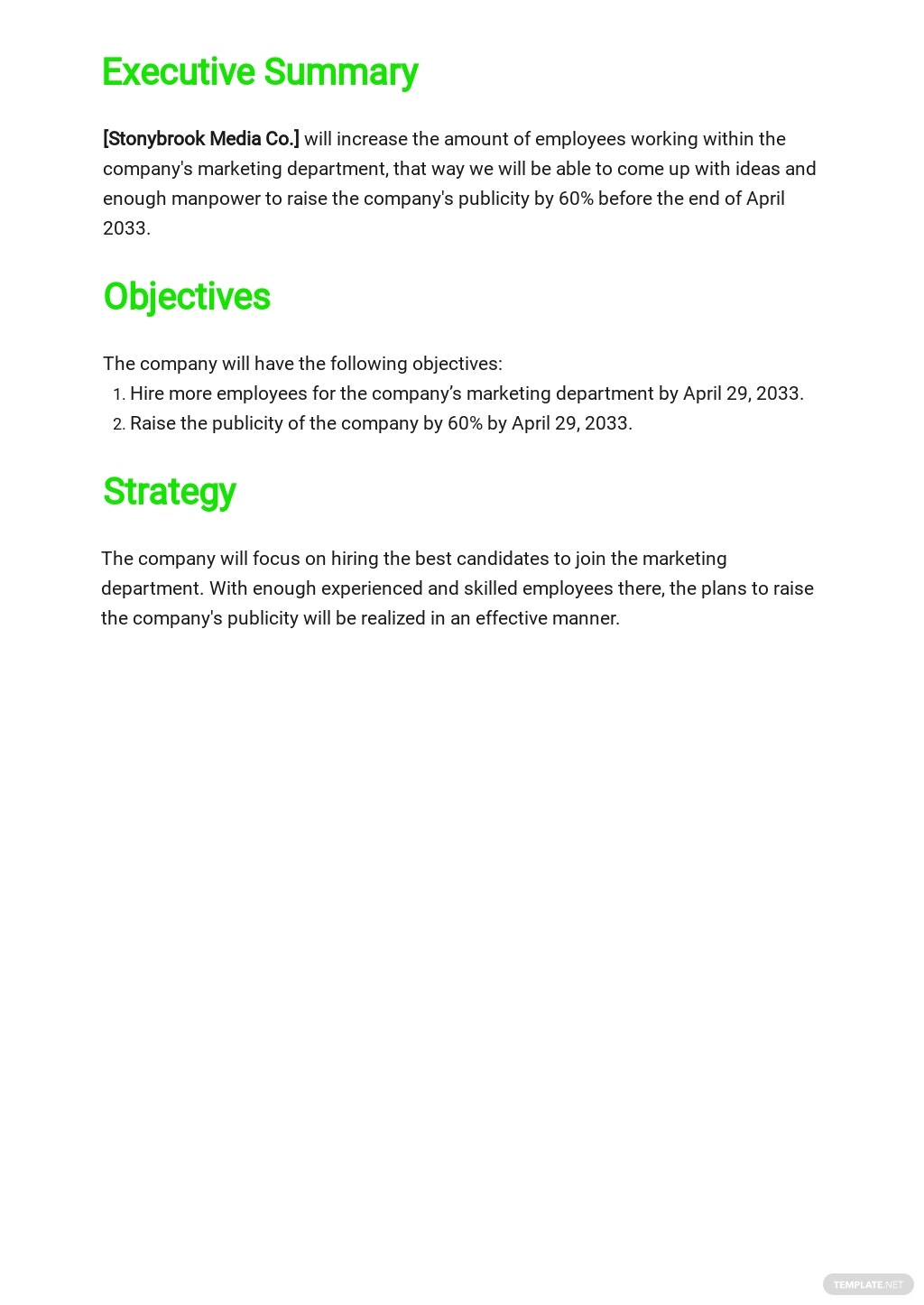 Media Strategy Plan Template 1.jpe