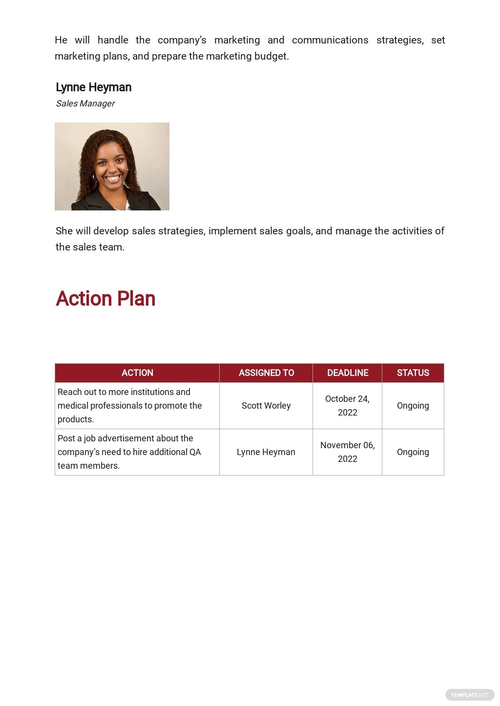 Product Strategy Plan Template 3.jpe