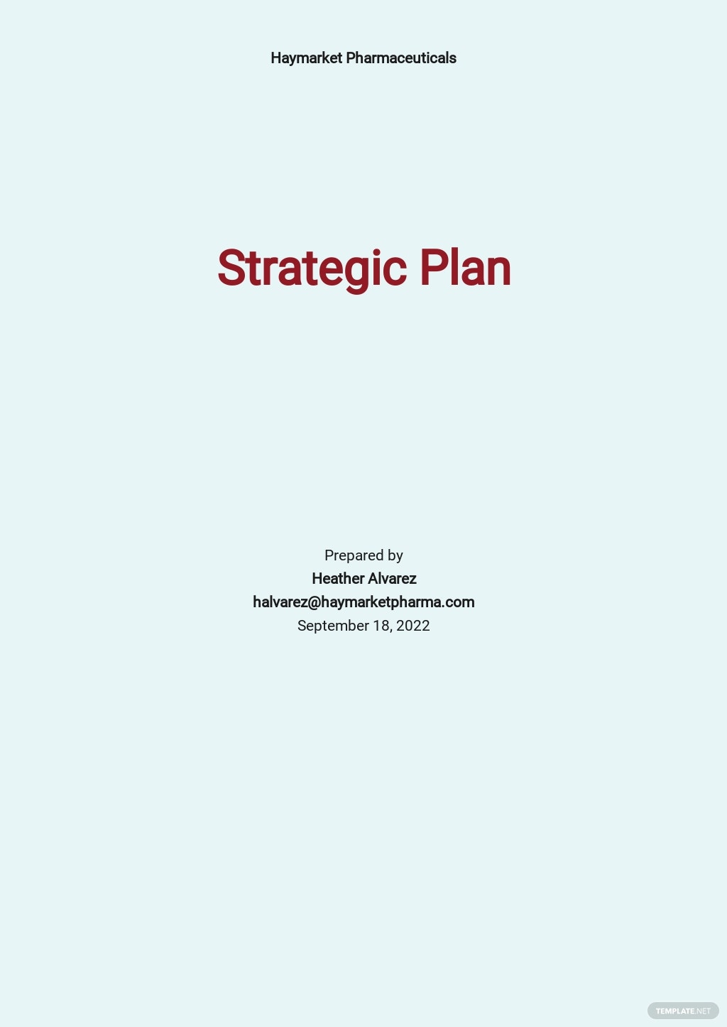 Product Strategy Plan Template