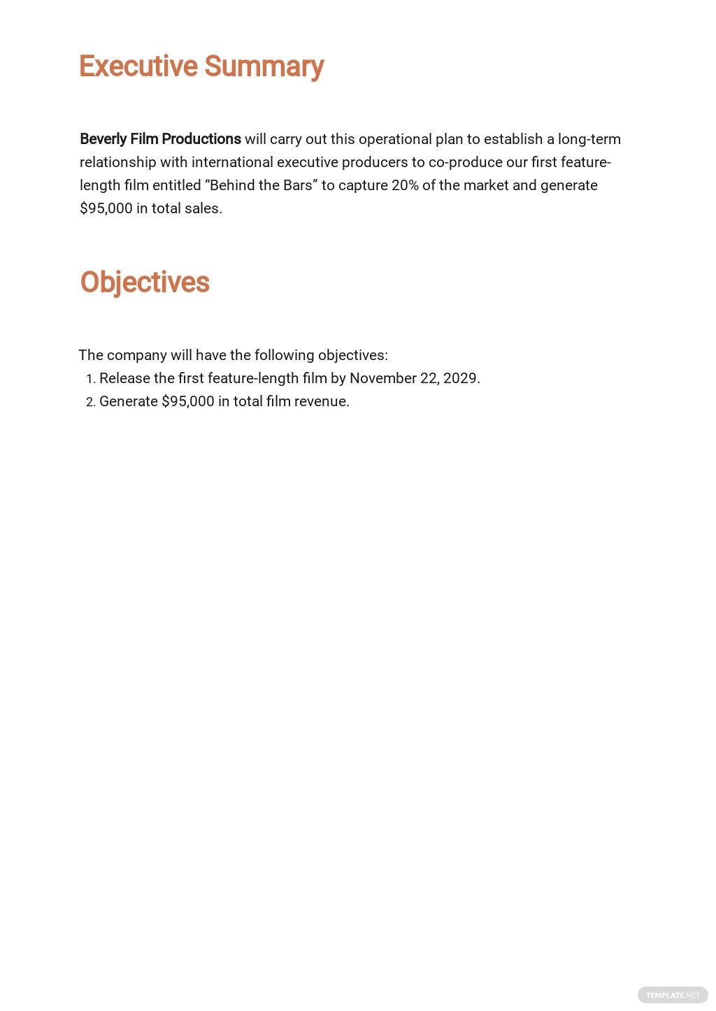 Startup Operational Plan Template [Free PDF] - Google Docs, Word, PDF