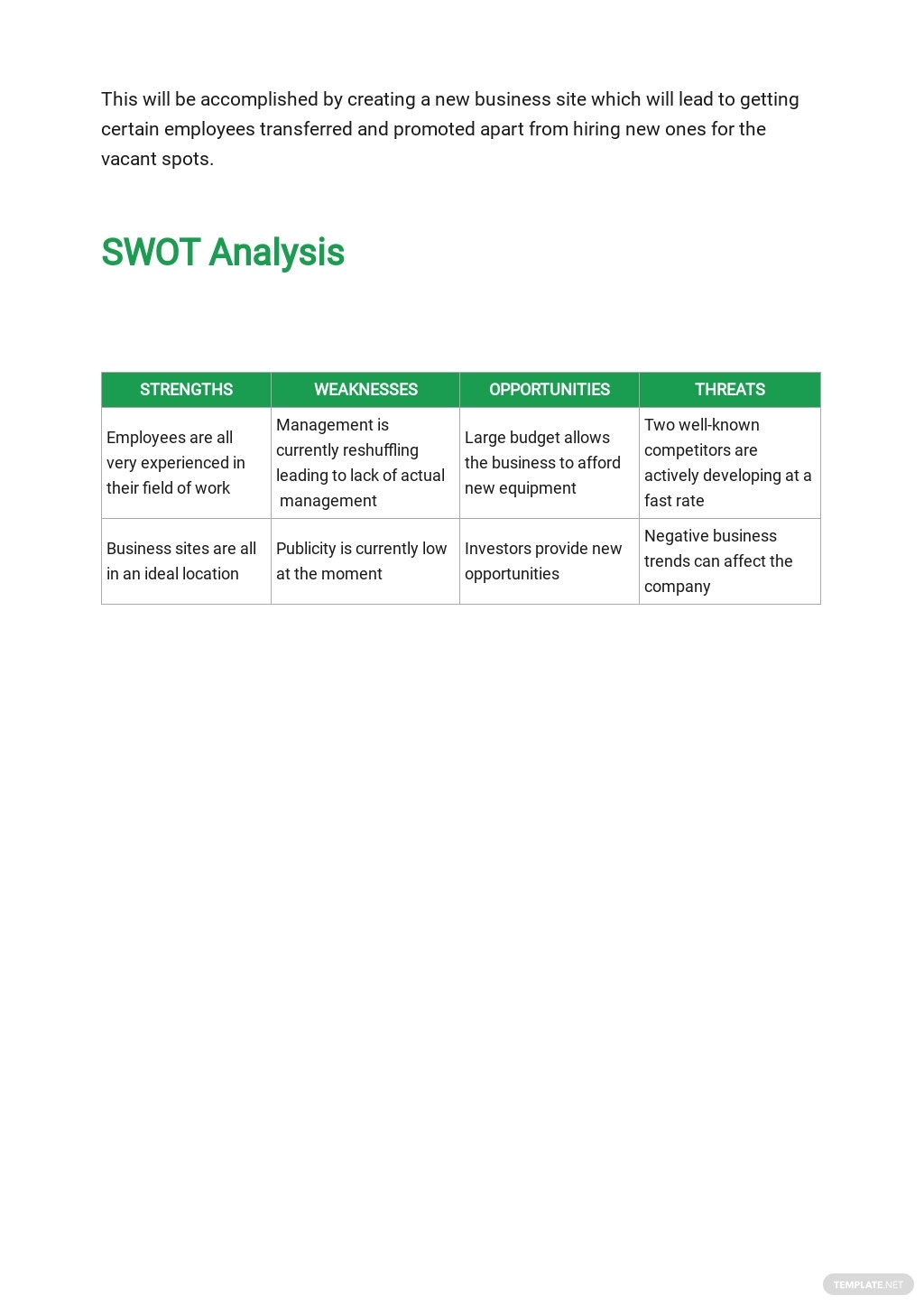 Strategic Growth Plan Template 2.jpe