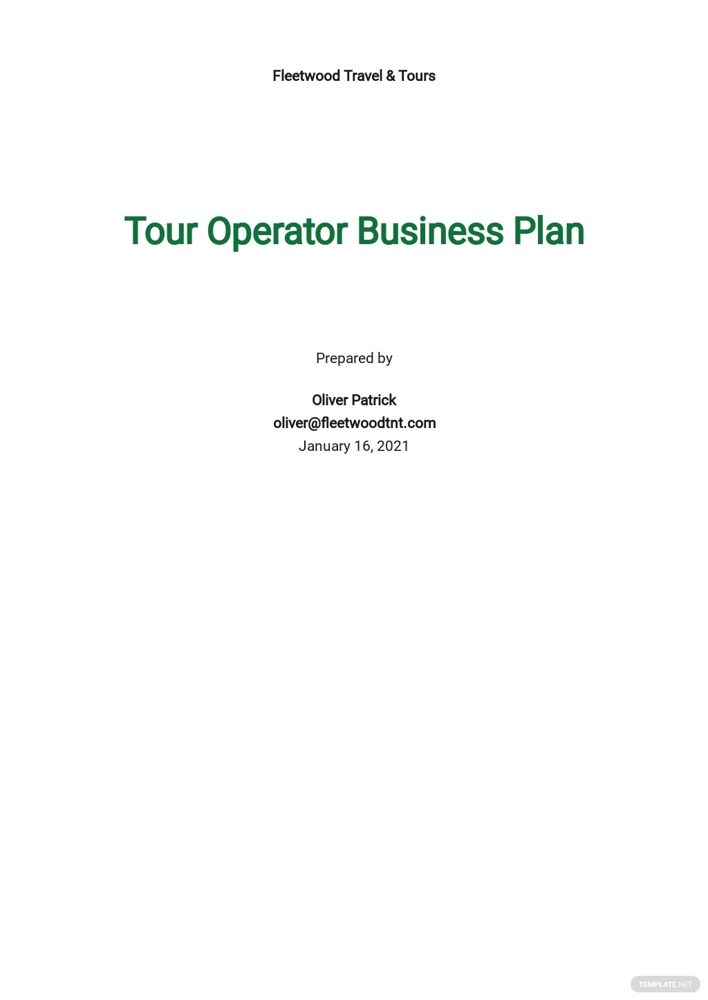 Tour Operator Business Plan Template.jpe