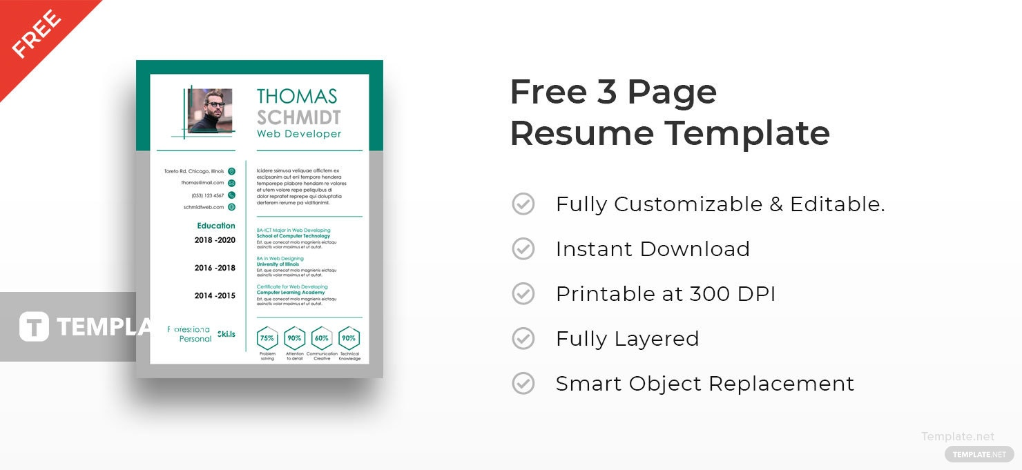 free 3 page resume template in adobe indesign template net