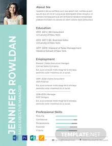 Sales Executive Resume Format Template