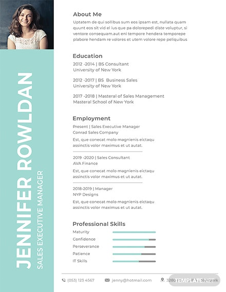 Free Sales Executive Resume Format