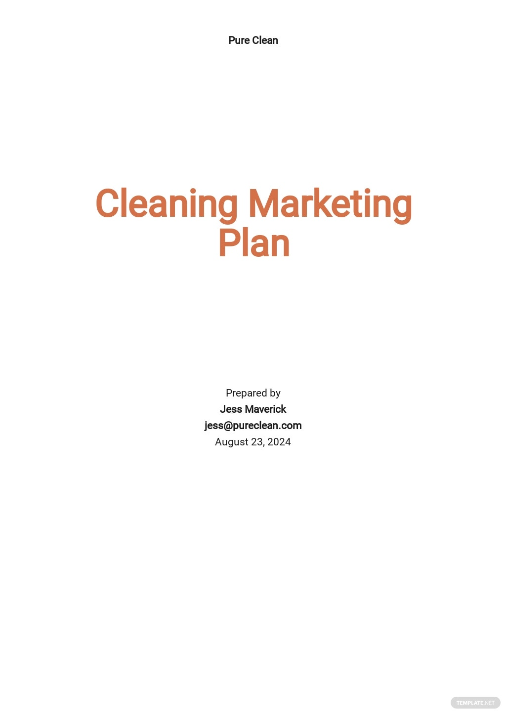 Cleaning or Janitorial Marketing Plan Template.jpe