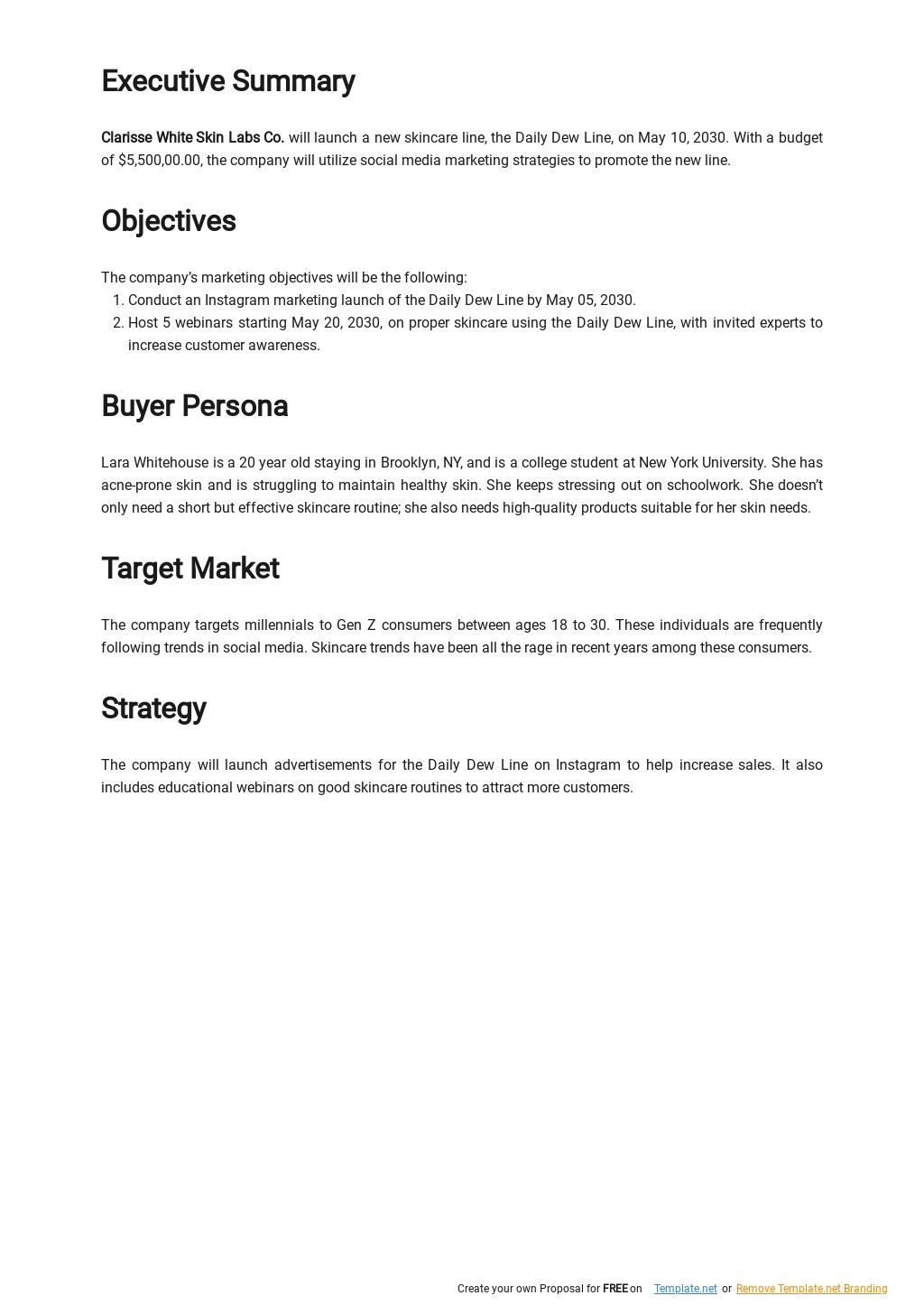 Digital Marketing Plan Template 1.jpe