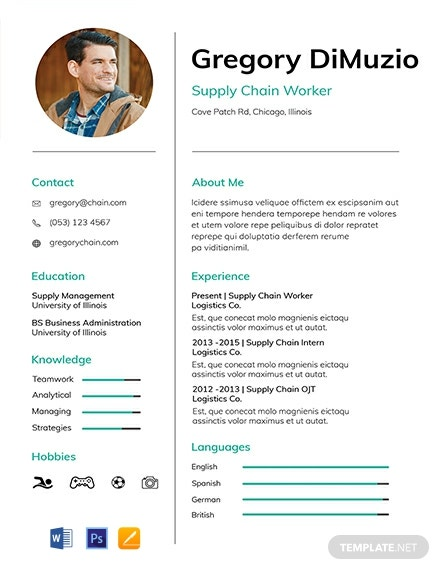 Free Supply Chain Resume Template Word Doc Psd