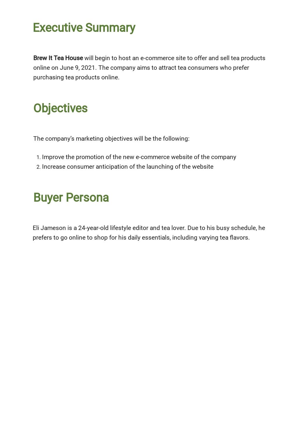 E commerce Marketing Plan Template 1.jpe