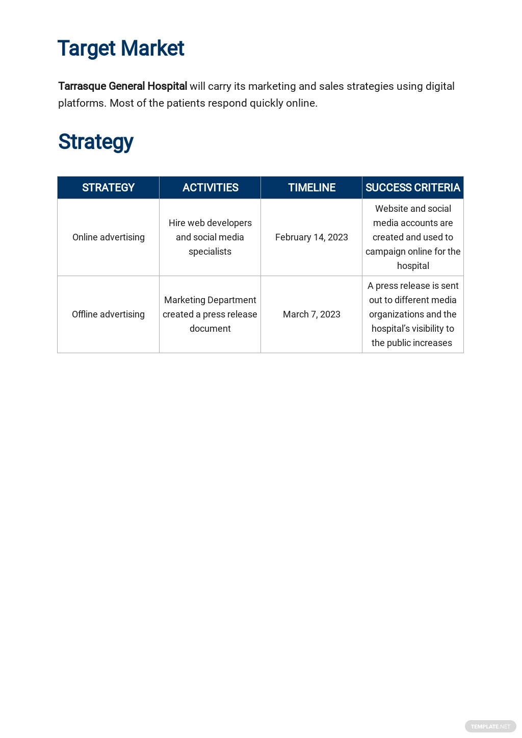 Hospital Marketing Plan Template 2.jpe