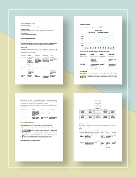 Sample Media Agency Sales Plan