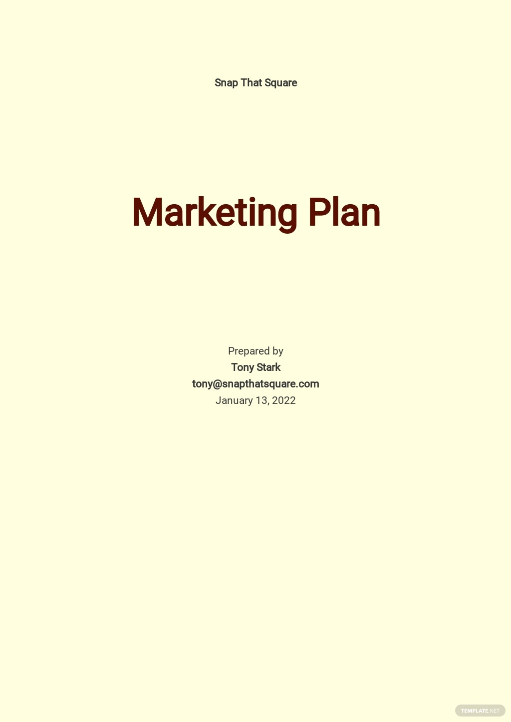 Photography Marketing Plan Template