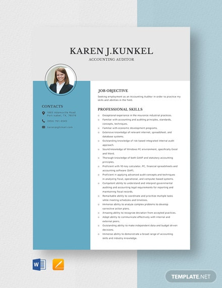 Accounting Auditor Resume