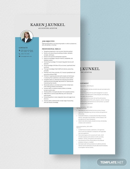 Accounting Auditor Resume Download
