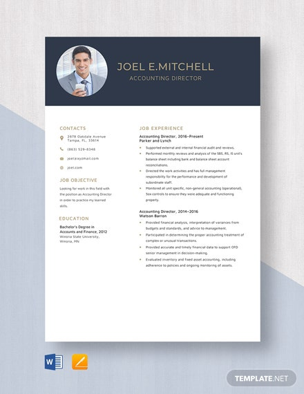 Accounting Director Resume Template