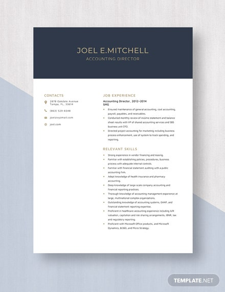 accounting director resumecv template  word doc